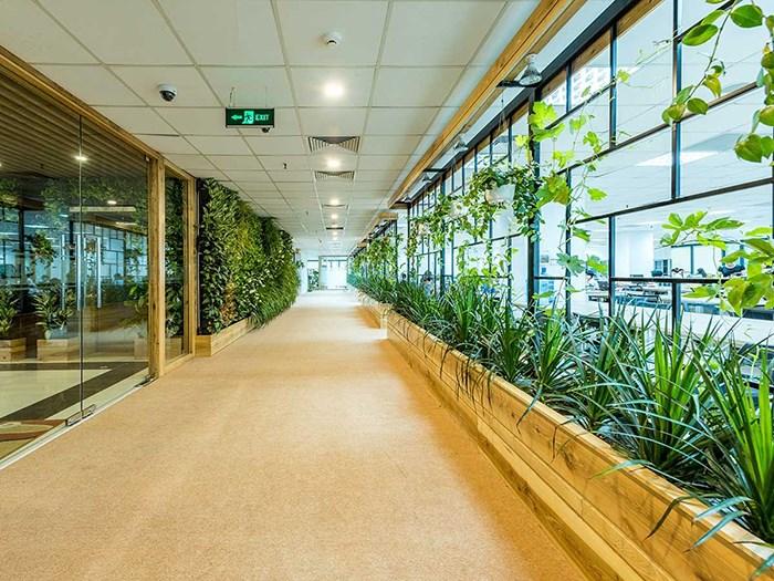 Xây dựng văn phòng xanh giúp tăng hiệu suất làm việc, tiết kiệm chi phí và bảo vệ môi trường.
